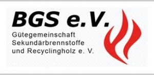BGS-Mitgliederversammlung 2020: Rück- und Ausblick der Aktivitäten