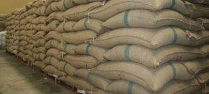 Nitratrichtlinie: Vorschlag zu weiteren Anpassungen der Düngeverordnung